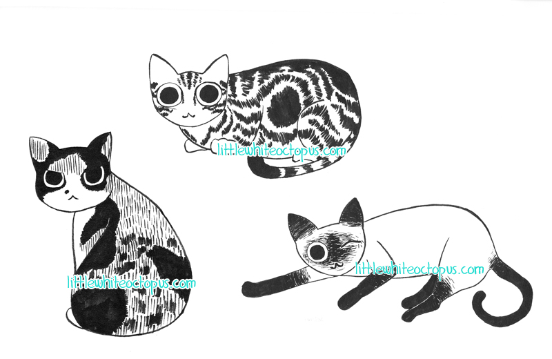 catexamples